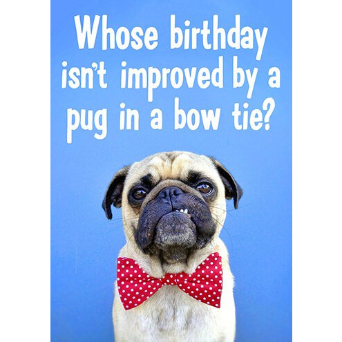 Pug in a bow tie card